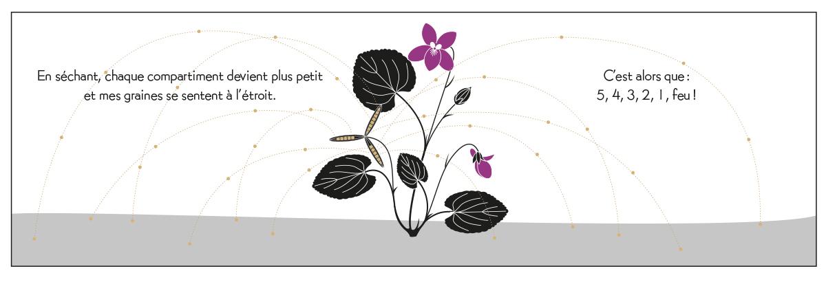 PlantesVagabondes_extrait