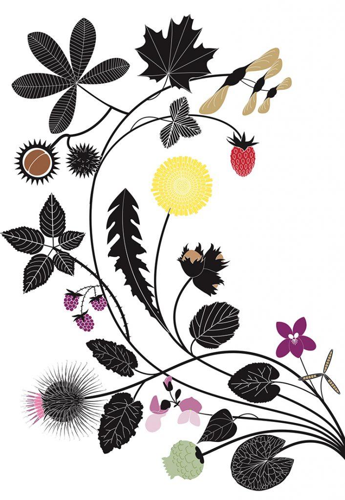 Plantes Vagabondes