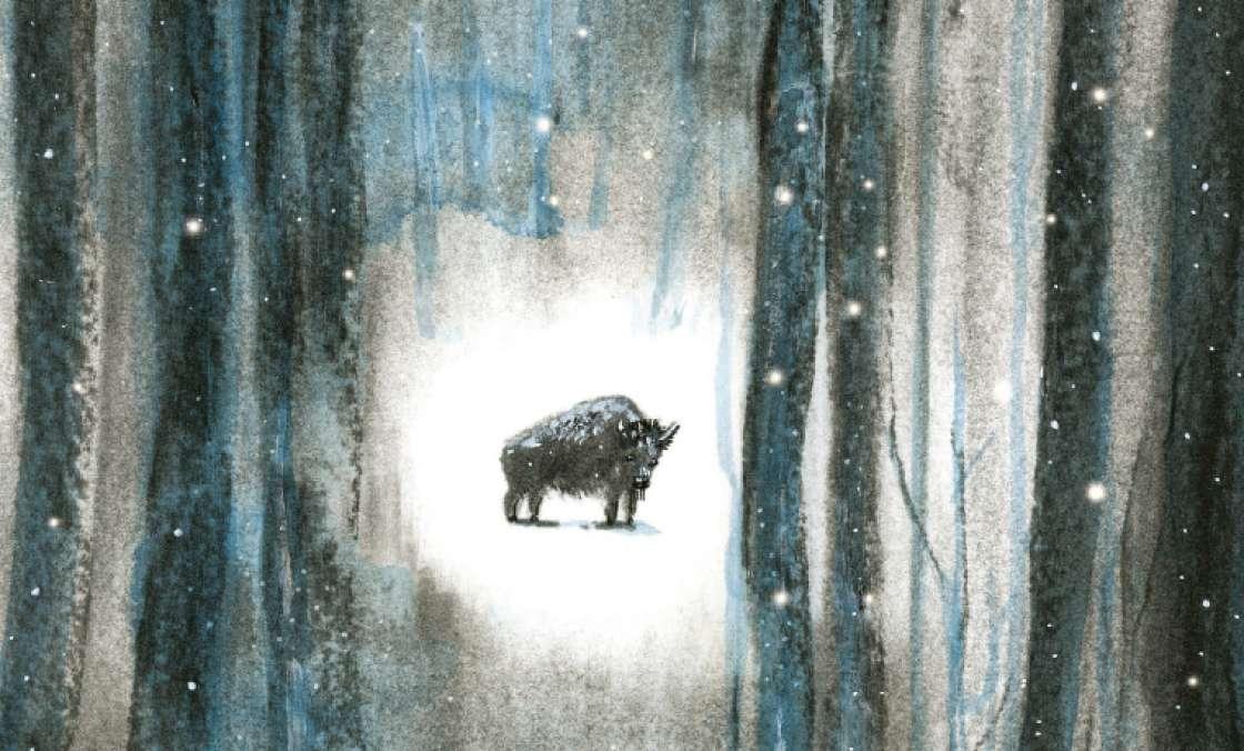Mon bison, de Gaya Wisniewski, primé en Belgique !