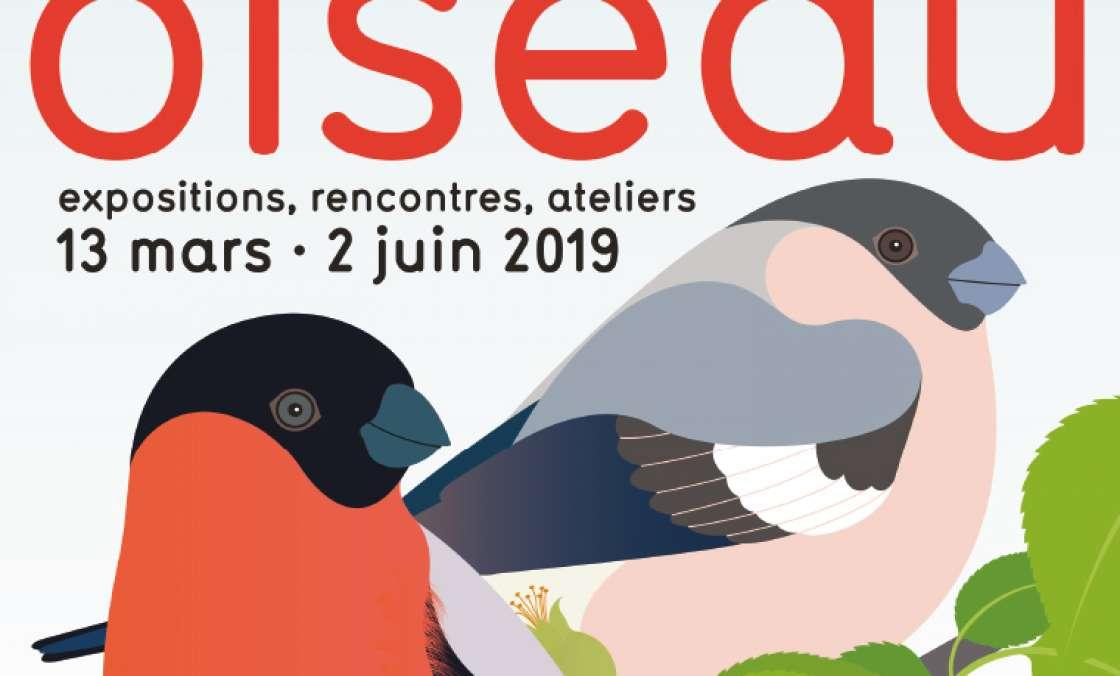 Oiseau, une exposition au carré d'Art de Nîmes