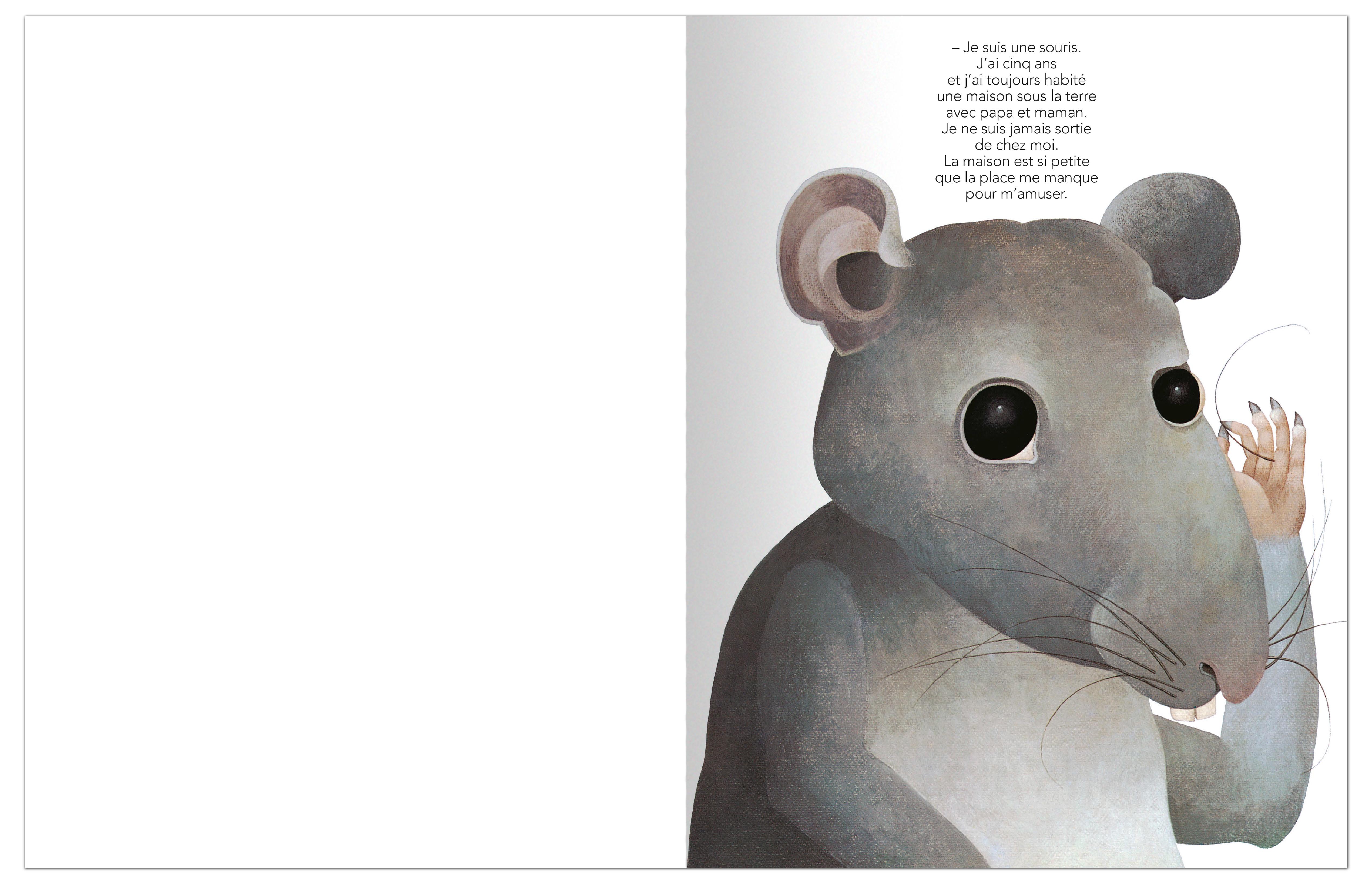 J Ai Une Souris Chez Moi éditions memo — comment la souris reçoit une pierre sur la