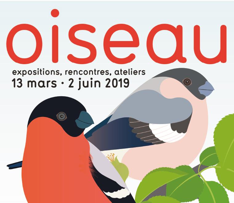 Oiseau, carte blanche aux éditions MeMo à Nîmes